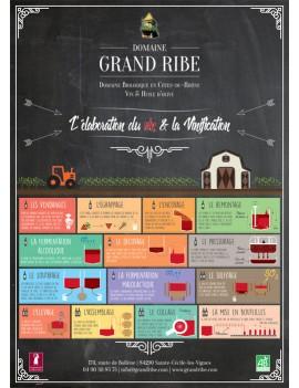 Affiche sur le processus de vinification du vin rouge Grand Ribe